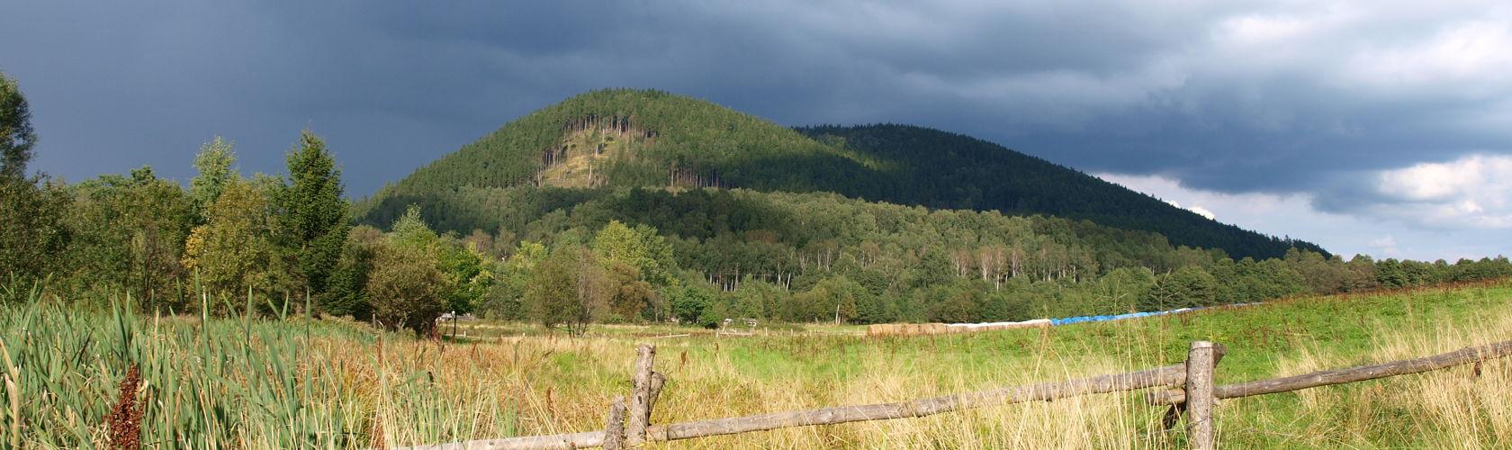 Mniszek (niem. Hoch-Berg) – szczyt górski (711 i 704 m n.p.m.) w południowo-zachodniej Polsce, w Sudetach Środkowych, w Górach Wałbrzyskich.