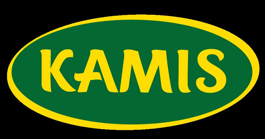 logoKAMIS
